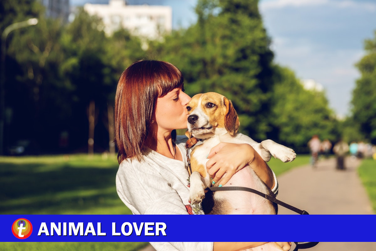 animal lover cover