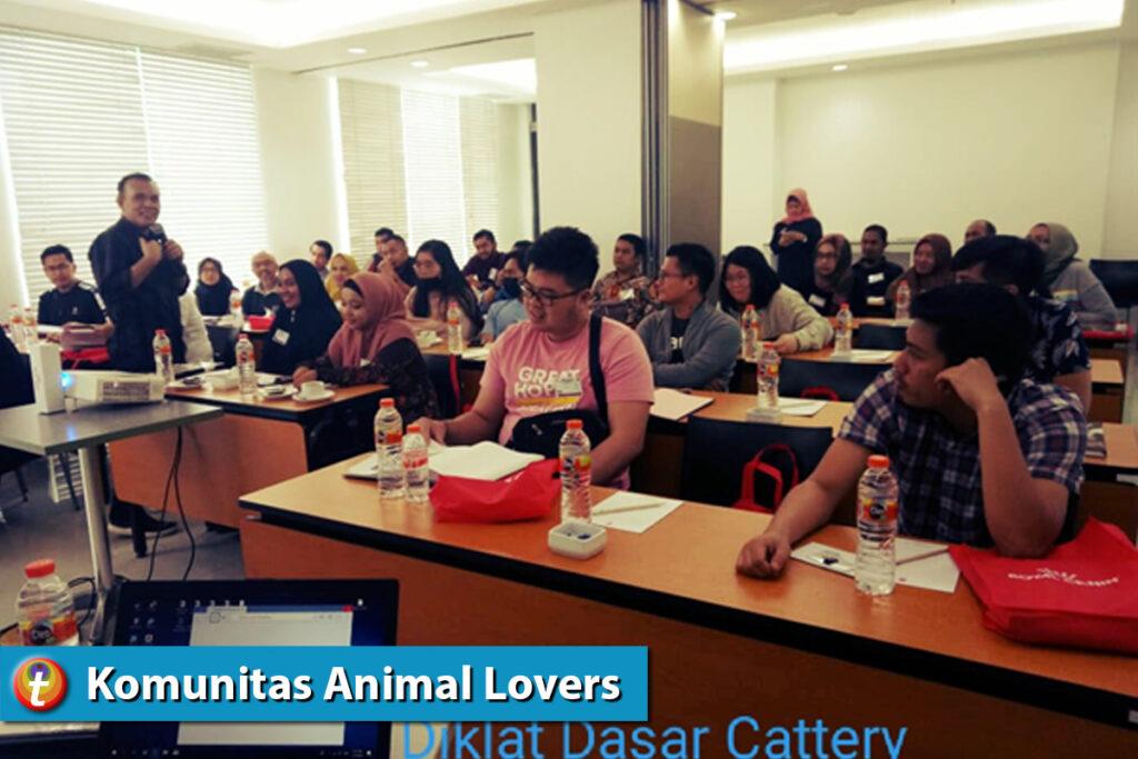 indonesia cat Association 7