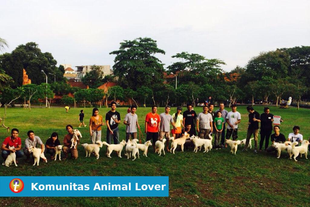 komunitas anjing kintamani 6