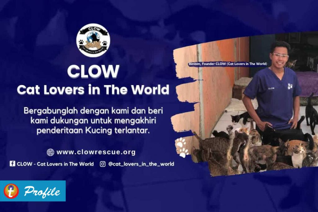 Cat Lovers in the World 2